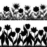 Blommor och gräskontur, sömlös uppsättning Arkivfoton