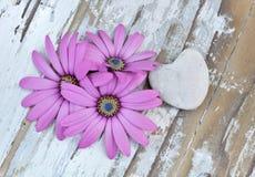 Blommor och hjärta royaltyfri foto