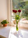 Blommor och klocka Arkivbilder