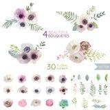 Blommor och lämnar Fotografering för Bildbyråer