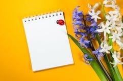 Blommor och notepad på en ljus orange bakgrund Fotografering för Bildbyråer