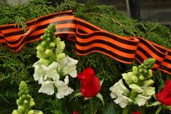 Blommor och St George & x27; s-band Arkivfoto
