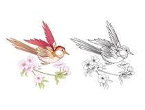 Blommor och svala Uppsättning av den kulöra prövkopia- och översiktsteckningen vektor illustrationer
