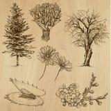Blommor och träd, packe no.4 Fotografering för Bildbyråer