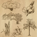 Blommor och träd, packe no.3 Arkivbild