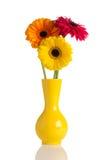 Blommor och vase. Royaltyfria Bilder