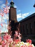 Blommor på bakgrunden av stadshuset av Stockholm royaltyfria foton