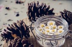 Blommor på bordlägga Royaltyfria Bilder