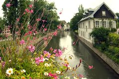 Blommor på bron över den Strasbourg kanalen Frankrike royaltyfria bilder
