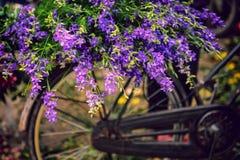 Blommor på cykeln Royaltyfria Bilder