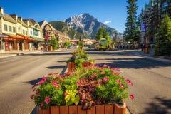 Blommor på den berömda Banff avenyn med gatasikt i Banff, Al Arkivfoto