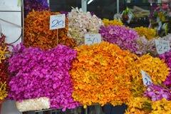 Blommor på den thailändska marknaden Royaltyfria Bilder