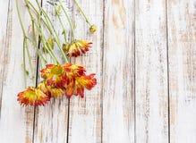Blommor på den vita wood tabellen Arkivbild