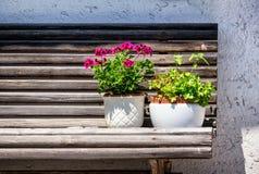 Blommor på en bänk arkivfoto