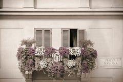 Blommor på en balkong Royaltyfria Bilder