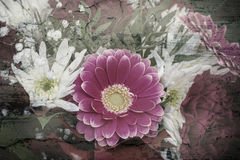 Blommor på en grungy bakgrund Royaltyfria Foton
