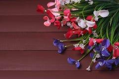 Blommor på en trä blom- ram, vår eller sommarbakgrund Royaltyfri Foto