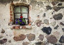 Blommor på fönstret av den forntida byggnadsstenväggen Royaltyfri Bild