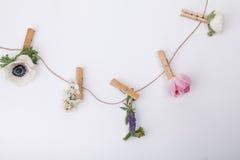 Blommor på gemet för besökkort Royaltyfria Bilder