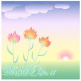 Blommor på gryning Arkivbild