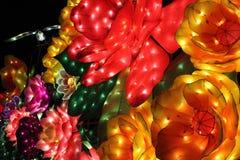 Blommor på natten arkivbilder