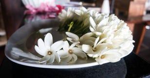 Blommor på plattan Fotografering för Bildbyråer