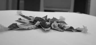 Blommor på sängen Royaltyfri Fotografi