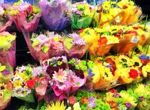 Blommor på skärm på blomsterhandeln Royaltyfri Fotografi