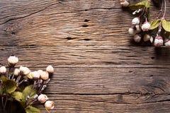 Blommor på trä Arkivbild