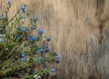Blommor på träbakgrund arkivbild