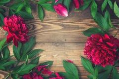 Blommor på träbakgrund, ram Royaltyfria Bilder