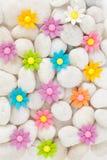 Blommor på vita kiselstenar royaltyfria bilder