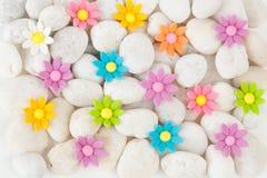 Blommor på vita kiselstenar arkivbilder