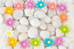 Blommor på vita kiselstenar arkivfoto