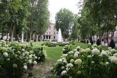 Blommor parkerar in av staden av Zagreb Royaltyfri Bild
