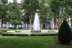 Blommor parkerar in av staden av Zagreb Arkivbilder
