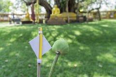 Blommor rökelse, stearinljus, guld för dyrkan i Budhism Arkivbild