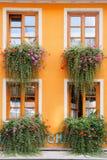 Blommor smyckat hus Arkivfoto