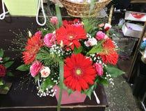 Blommor som är till salu i blommamarknad moscow russia arkivfoto