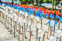 Blommor som göras från en plast- flaska återanvänd plast- flaska Förlorat återvinningbegrepp Royaltyfri Bild