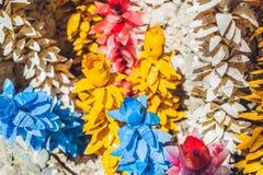 Blommor som göras från en plast- flaska återanvänd plast- flaska Förlorat återvinningbegrepp Arkivfoton