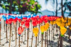 Blommor som göras från en plast- flaska återanvänd plast- flaska Förlorat återvinningbegrepp Arkivfoto