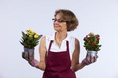 blommor som planterar den höga kvinnan royaltyfria bilder