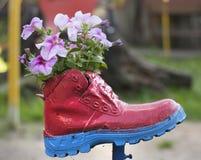 Blommor som planteras i en gammal röd sko Royaltyfria Bilder