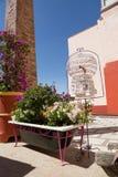 Blommor som planteras i gammalt badkar Royaltyfria Bilder
