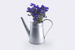Blommor som sätts in i kokkärlet Arkivfoton
