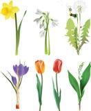 blommor som ställs in fjäder stock illustrationer