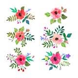 blommor ställde in vektorn Färgrik blom- samling med sidor och f Arkivbilder