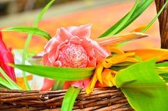 blommor till den buddistiska munken Royaltyfria Bilder
