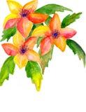 blommor tre Arkivfoton
